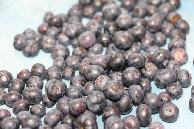 dry berries