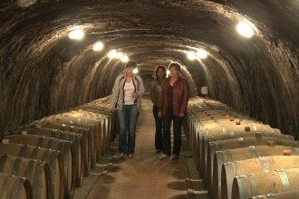 Tokaj Wine Caves