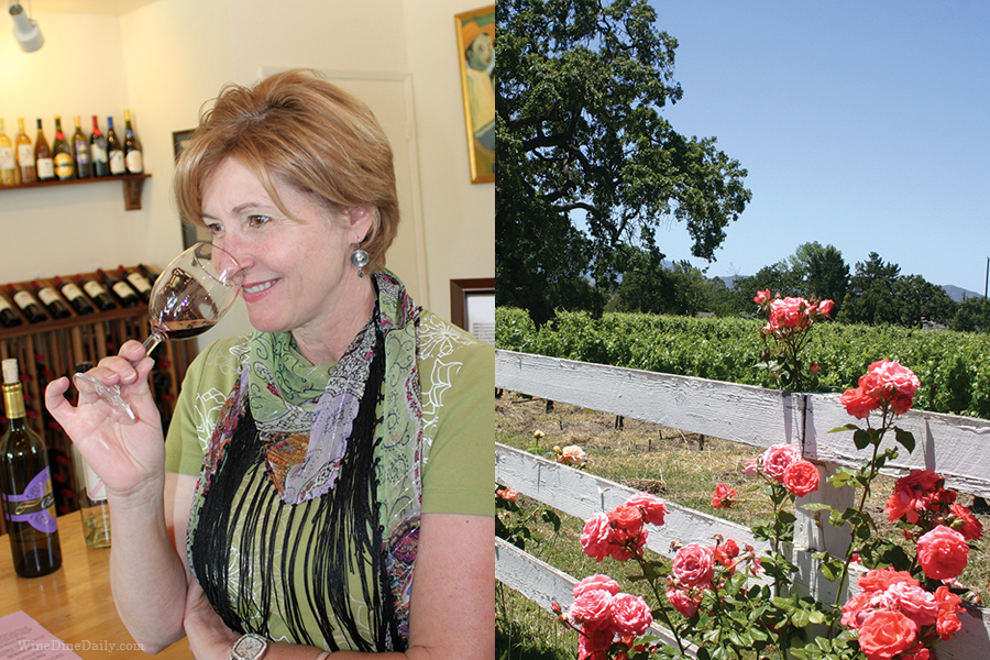 judit-wine-vineyard.jpg