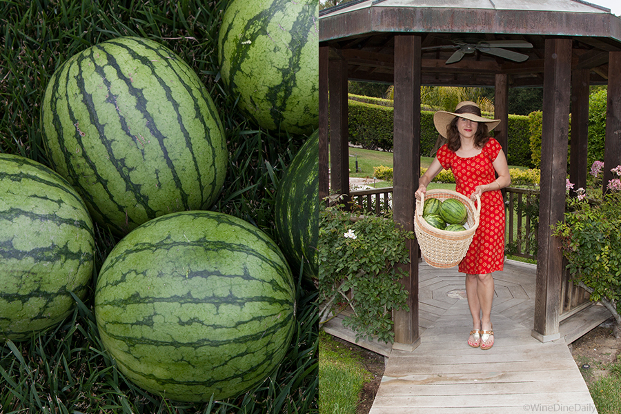 watermelons-girl.jpg