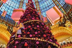 Top Three Trees & Happy Holidays