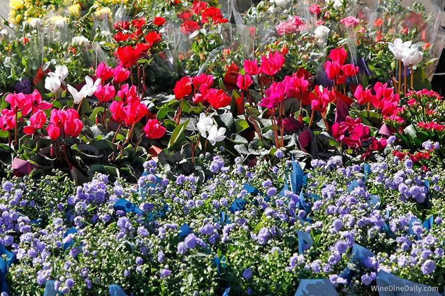 Flowers Farmers Market Santa Barbara