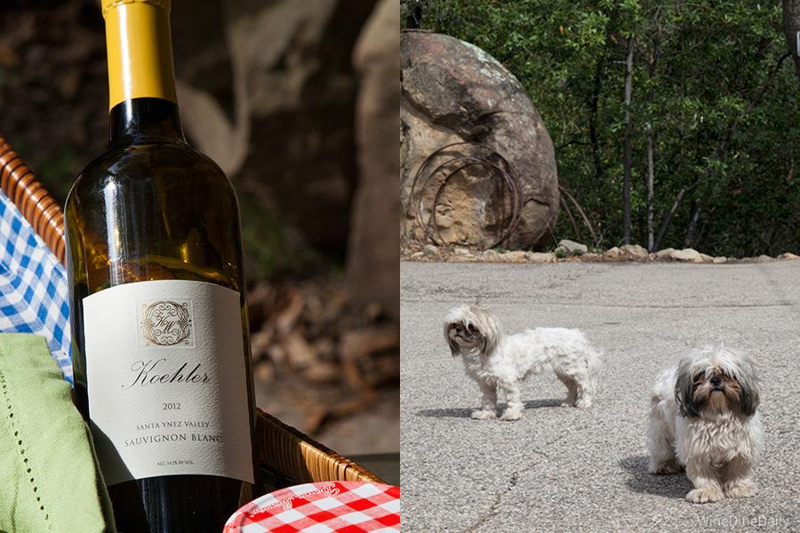 Koehler Sauvingon Blanc Wine Dogs