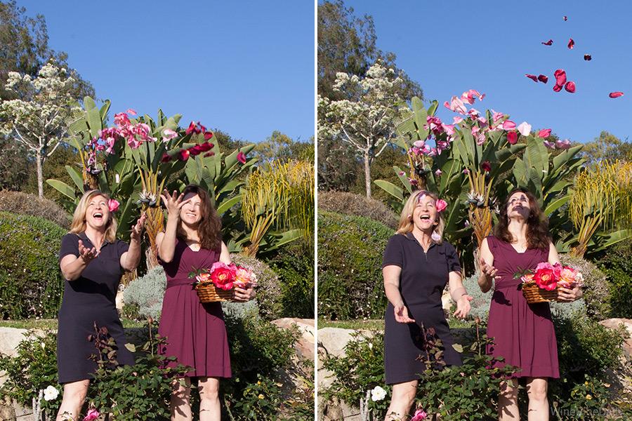 Rose Shower Garden