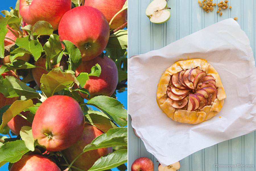 Apples Galette