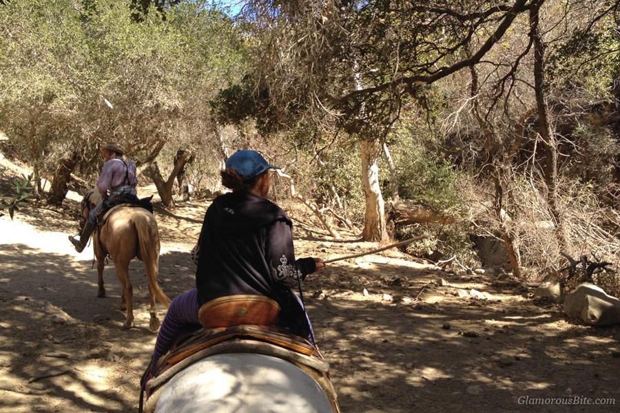Horseback riding SB Circle Bar B