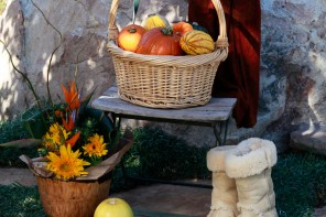 Weekend Bites Thanksgiving Pumpkins