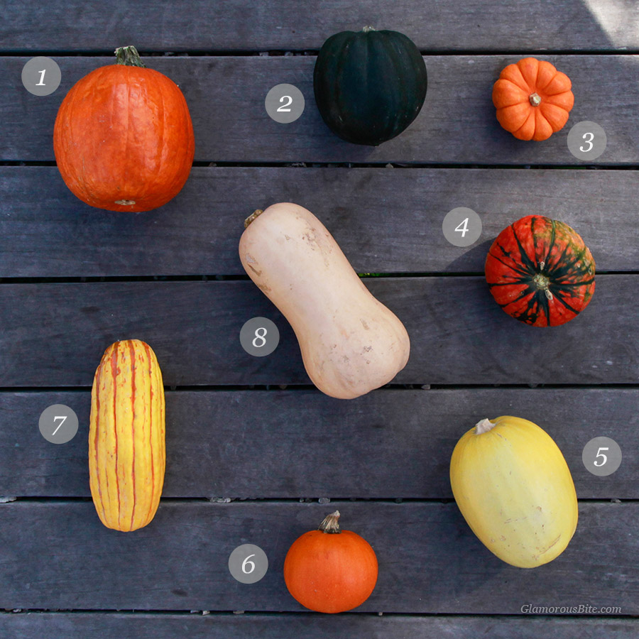 Winter Squash Pumpkin Guide