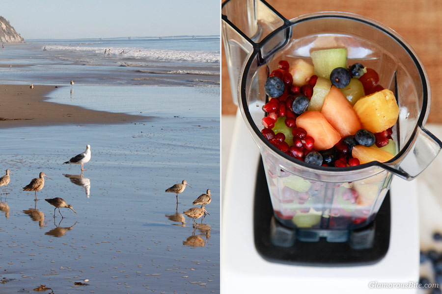 Beach Fruit Smoothie Ingredients