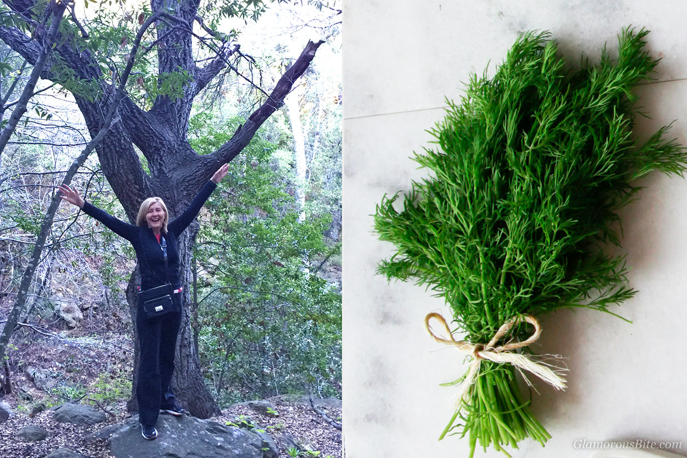 Judit Tree Fresh Dill