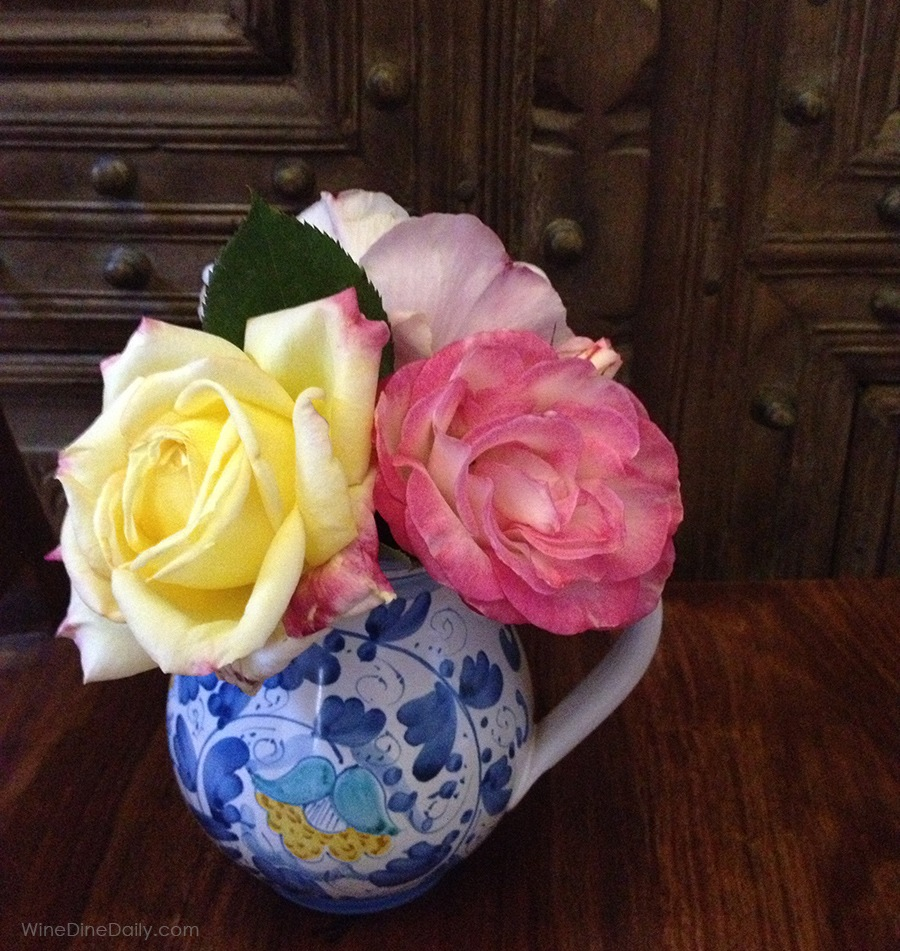 Spring Roses Daily Photo