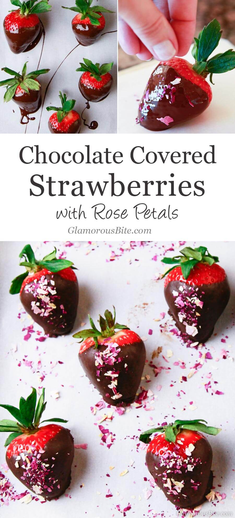Chocolate Covered Strawberries decorate with Rose Petals from GlamorousBite.com