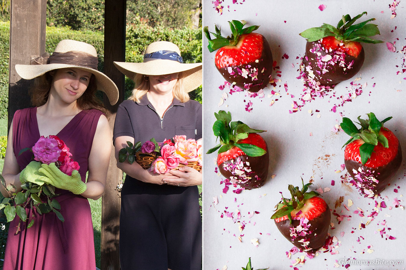 Corina and Judit Chocolate Strawberries and roses