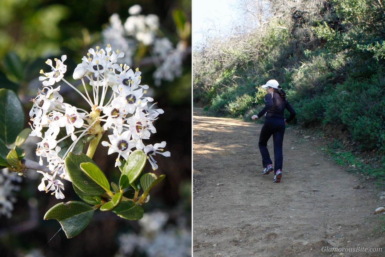 Corina Santa Barbara Hike Inspiration Point